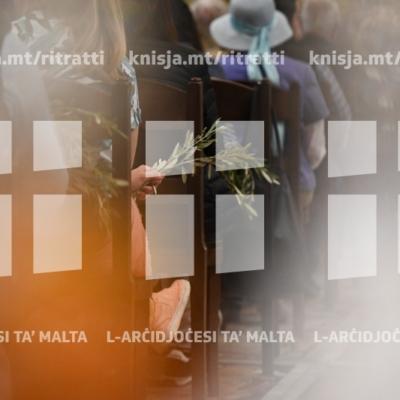 Ċelebrazzjoni ta' Ħadd il-Palm, bit-tberik tal-friegħi taż-żebbuġ u l-palm – 14/04/19