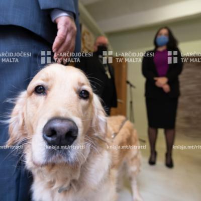 Uffiċċju ġdid għal Malta Guide Dogs Foundation grazzi għall-Arċidjoċesi ta' Malta – 30/11/20